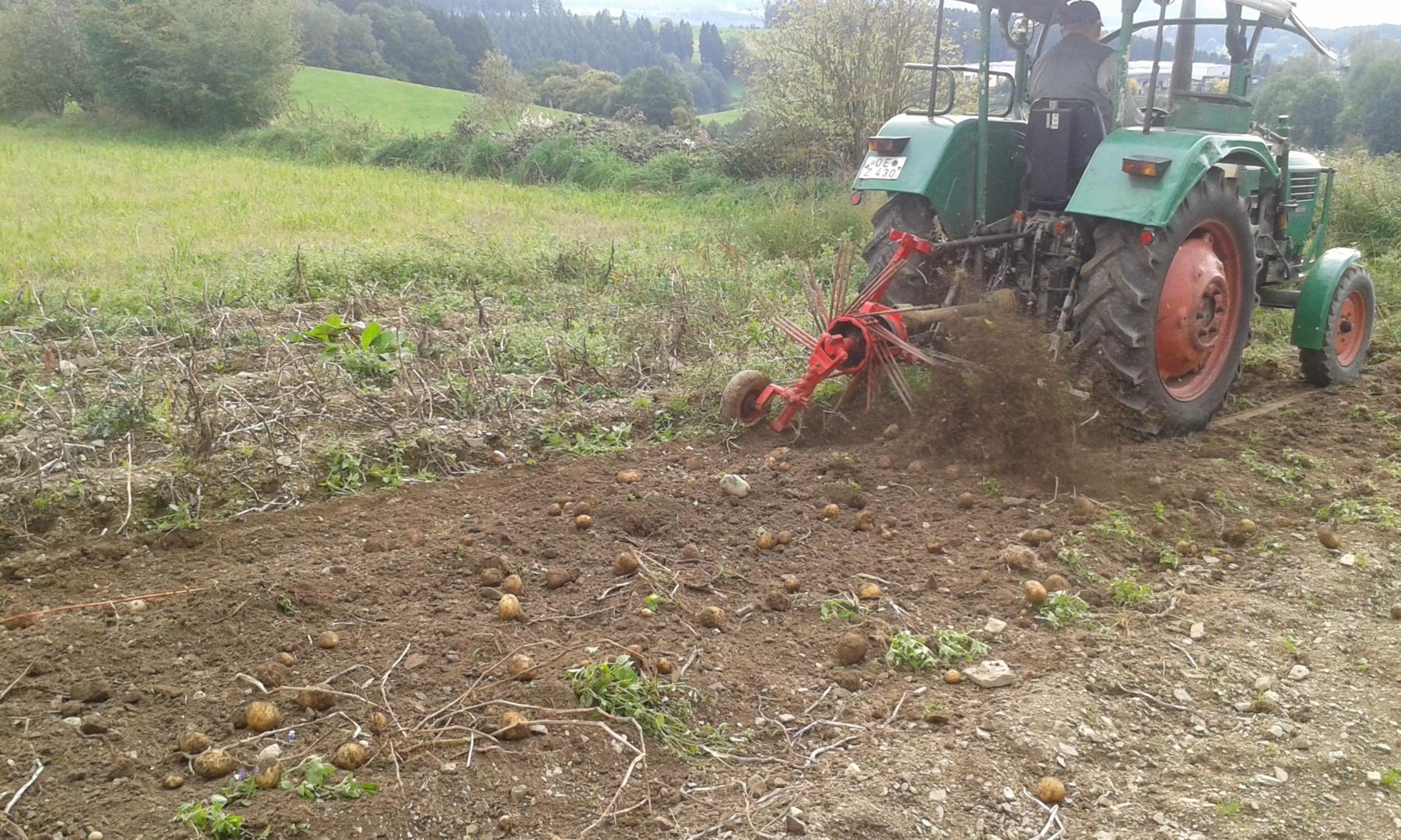 Abenteuer auf dem Kartoffelfeld!